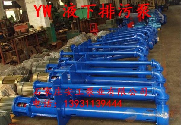 350YW1100-10-55液下排污泵(点击咨询)