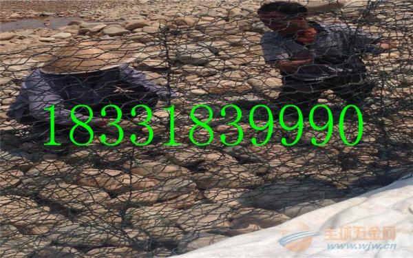 石笼网 8*110石笼网箱