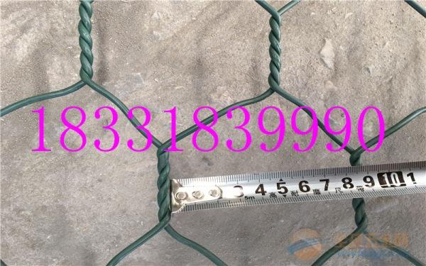 8*10cm绿格网箱 包塑石笼网 河道护坡网杰晨生产厂家