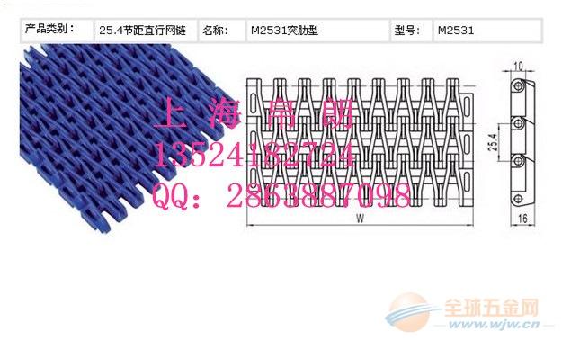 2531突肋塑料网带 2531突肋塑料网带厂家 帛朗供应