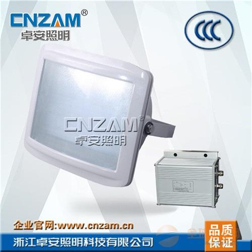 卓安照明ZGE604防眩应急通路灯