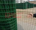 厂家直销波浪电焊网 浸塑荷兰网 5X5荷兰网