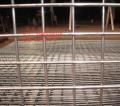 厂家优质供应钢丝格栅网 黑钢丝网片