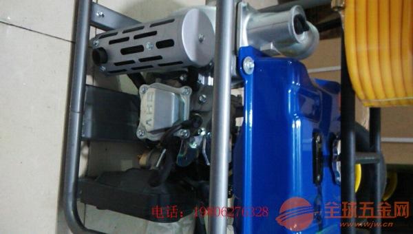 呼伦贝尔 3寸小型污水泵 园林绿化灌溉抽水机