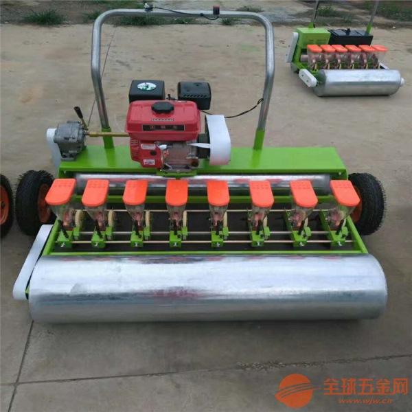 天水一机多用蔬菜播种机 绿化草坪点播机