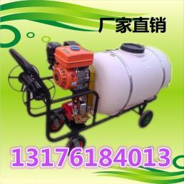汽油喷雾器