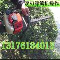 宏兴绿篱修剪机 园林维护剪树机 绿篱机