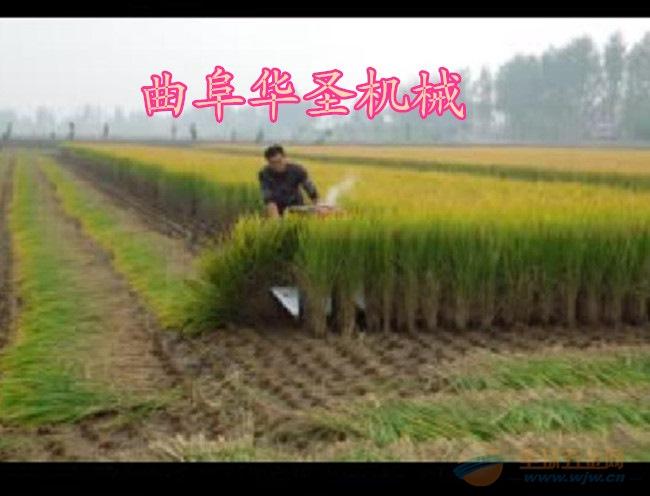 青稞割晒机 手扶小麦收割机