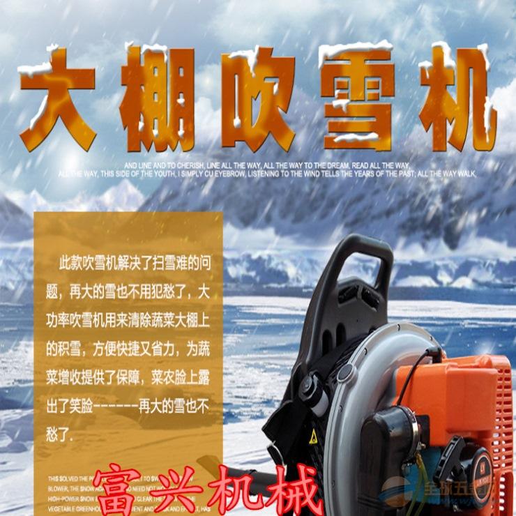 洛阳大棚清理吹雪机价格农用手提汽油吹尘机