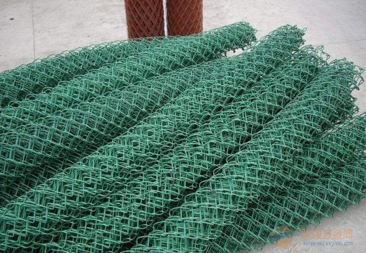 绿化植草网