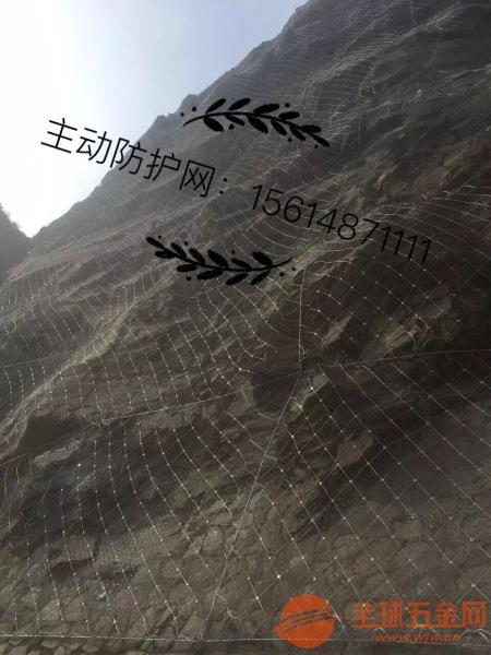 中原区河北防护网知名品牌