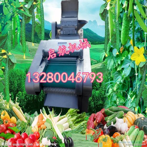 满城县 多功能切菜机大产量切菜机图片