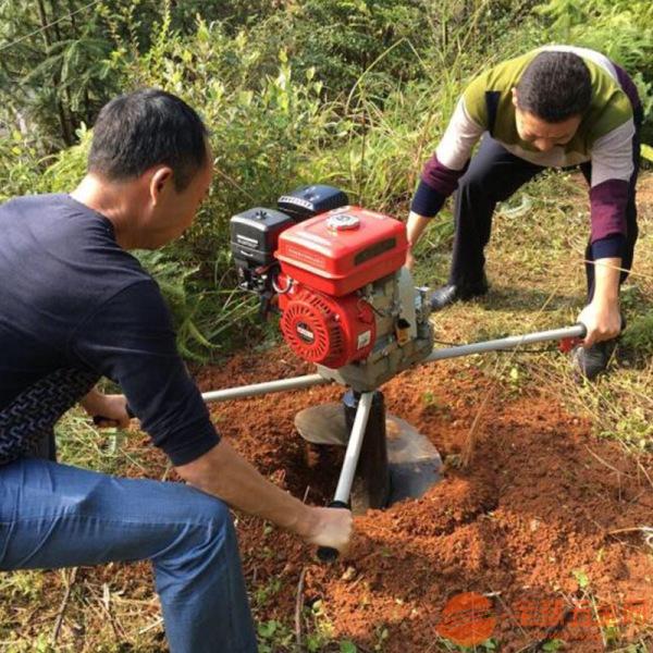 溫州便攜式汽油打孔機 手推挖坑機價格