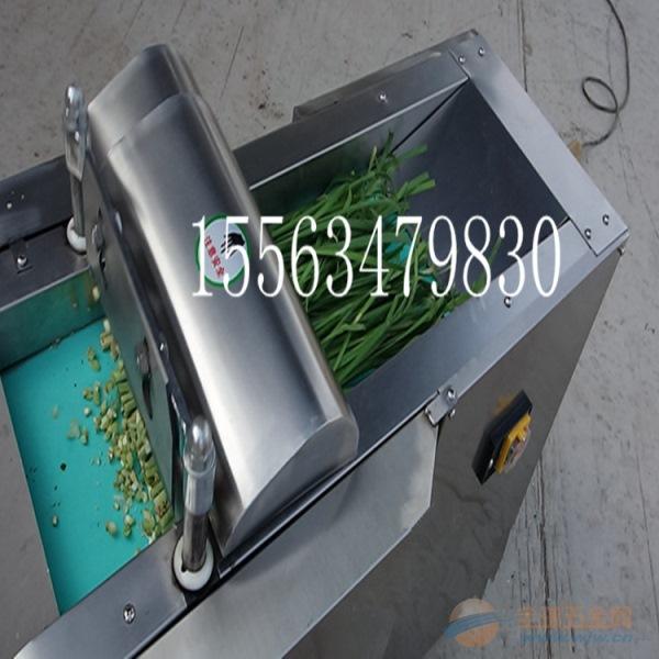 呼和浩特 切苦瓜切片机 不锈钢带离心切菜机