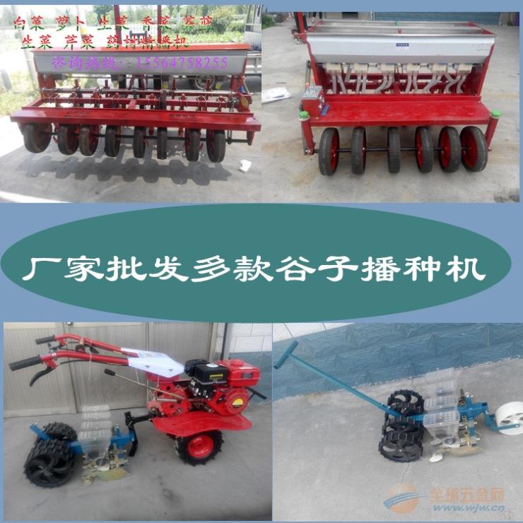 柘荣县 玉米播种机 可调株距精播机