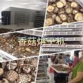 新款香菇干燥设备厂家