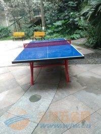 成都室内外乒乓球桌、篮球架厂家价格