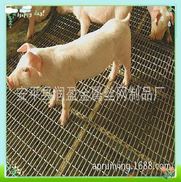 安徽钢丝网养殖业 矿山用轧花网