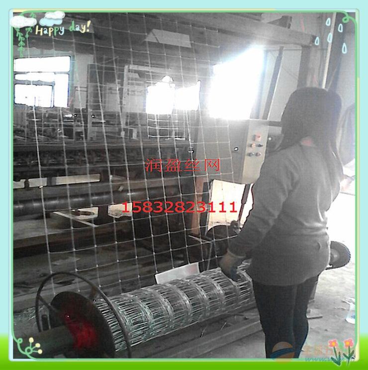 鹿网黄冈草原围栏网热镀锌丝生产厂家