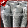 养殖用不锈钢电焊网