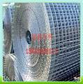 天津不锈钢电焊网厂家