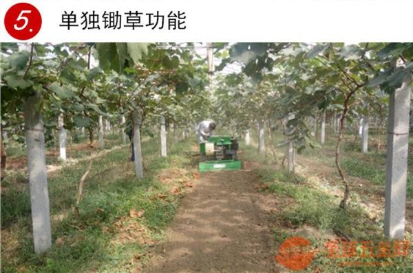 清徐县大棚开沟施肥机履带式果园施肥机
