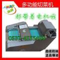 扬州 电动商用蔬菜切片切丝机 冬瓜切块机