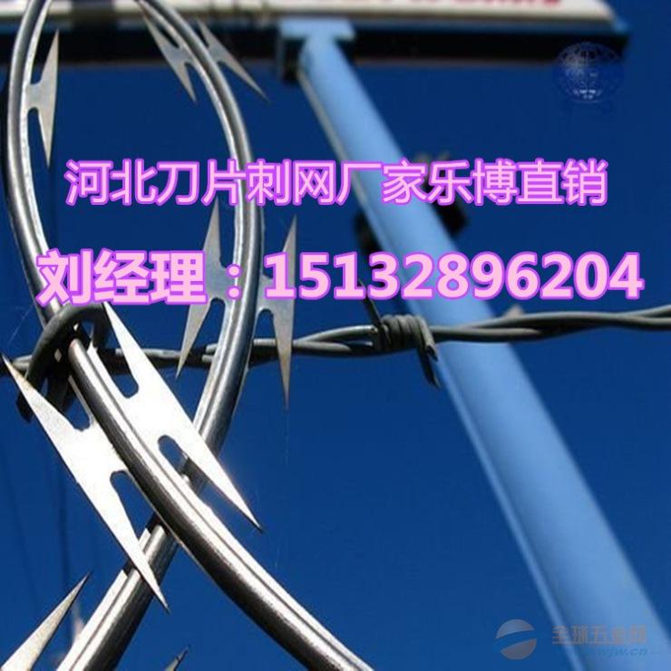 浙江防爬刺网杭州包塑铁蒺藜嘉兴园林绿化带围网