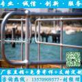 供应带球栏杆 广州厂家生产工艺 珠海港口球接栏杆 组装式围栏