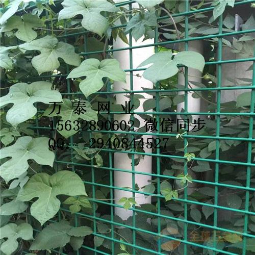 养殖网围栏
