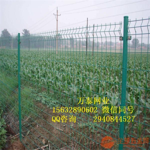 绿色浸塑网栏 现货双边铁丝围栏 养殖场围墙围栏