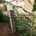 果园防护防腐蚀铁丝网