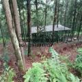 圈菜园用铁丝网围栏
