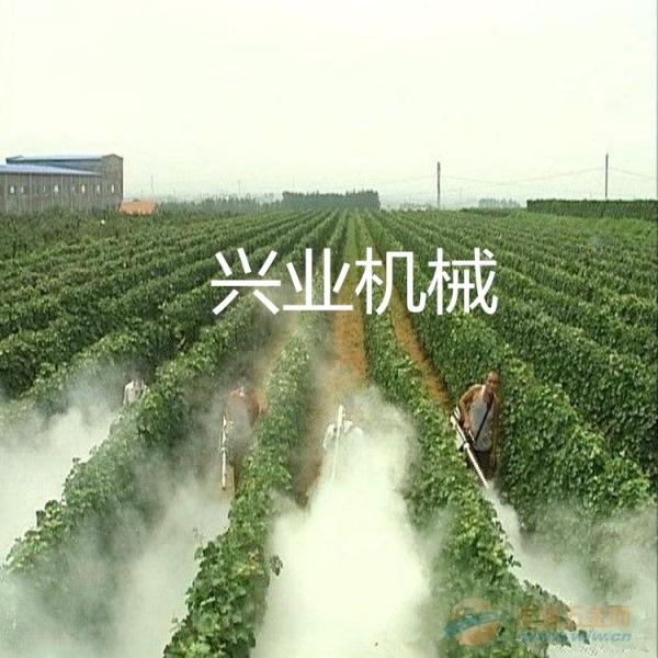 果树打药机商视频南陵县农用背负式果园弥雾机