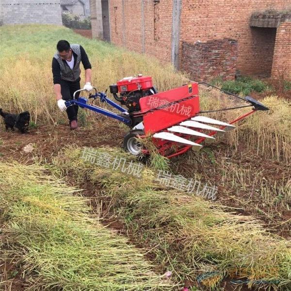 武威稻麦收割打捆一体机自走式牧草割晒机厂家