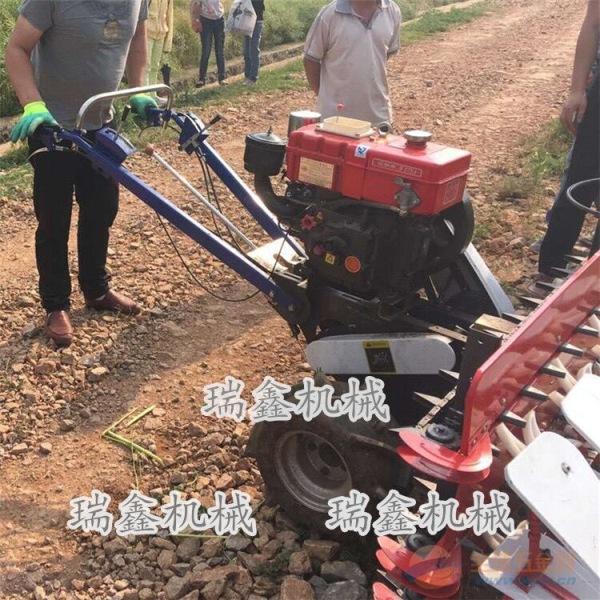 手扶式稻麦收割机鄂州高低作物通用割晒机