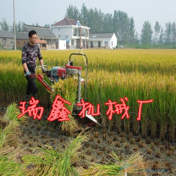 德兴水稻秸秆收割机自走式稻麦微型割晒机