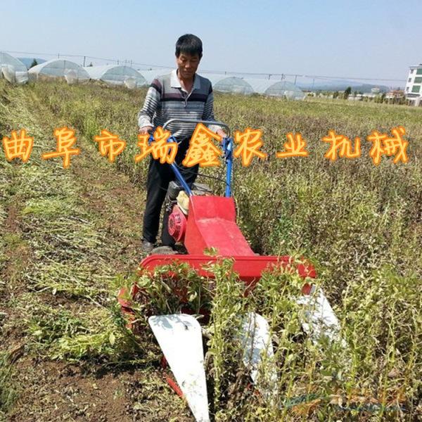 铜陵甜叶菊艾草割晒机四轮配套使用的割草机