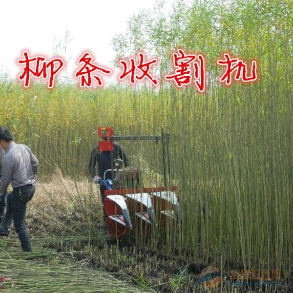 菏泽辣椒收割机多用途甘蔗牧草棉花收割机