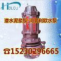 船用潜水式泥浆泵无堵塞排污吸沙泵耐磨耐腐自动搅拌泵2.2KW