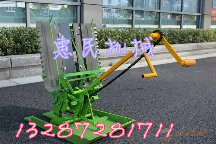 水稻田间插秧机 两行手扶式插秧机 人力小型插秧机