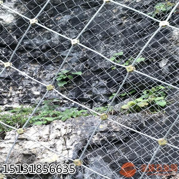 厂家供应sns柔性防护网主动/被动网-景区防护专用