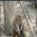 不锈钢卡扣绳网_304/316材质动物园专用隔断防护网