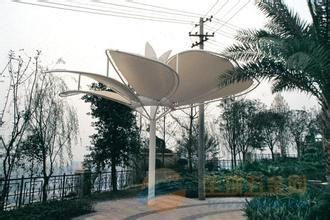 淮滨园林景观膜结构