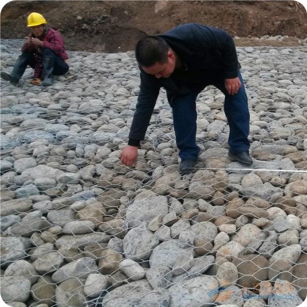 河北厂家直销供应石笼网格宾网