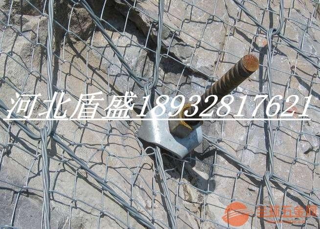 绞索网S250绞索网QUAROX绞索网SPIDER蜘