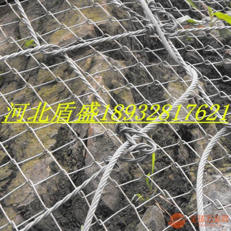 新一代山体防护网绞索网-河北盾盛厂家直销