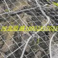 绞索网S250绞索网|QUAROX绞索网|SPIDER蜘蛛网盾盛厂家G