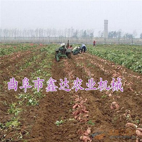 土豆收获机