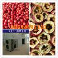 山东青州山楂烘干机哪里有卖